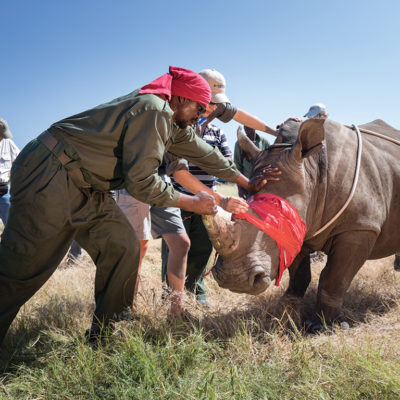 2019-great-plains-foundation-rhinos-without-borders-1