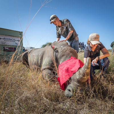 2019-great-plains-foundation-rhinos-without-borders-2