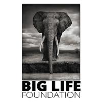2019-GPF-Sponsors-biglifefoundation