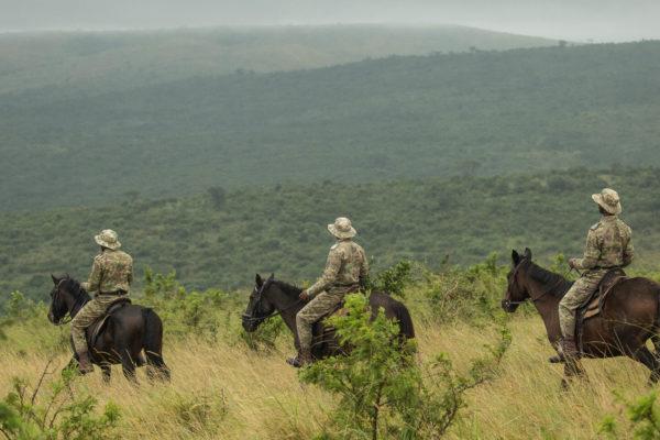 Mounted Rangers Image